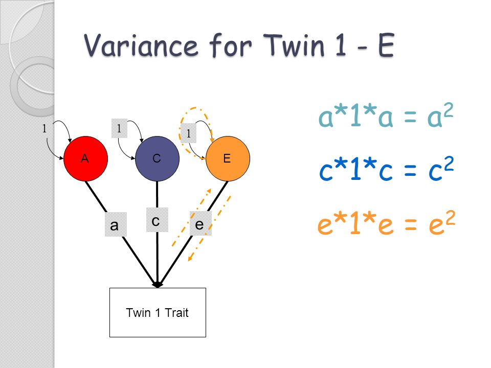 Variance for Twin 1 - E a*1*a = a 2 c*1*c = c 2 e*1*e = e 2 Twin 1 Trait ACE c e a 11 1