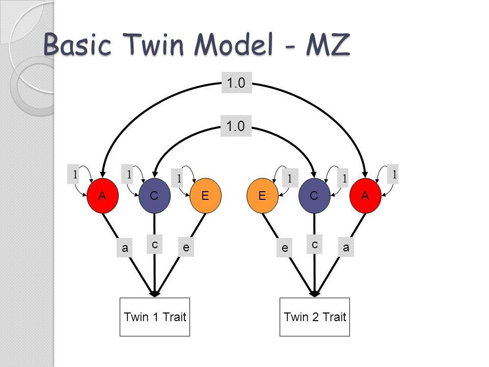 Basic Twin Model - MZ Twin 1 Trait ACE c e a Twin 2 Trait ECA c a e 1.0 11 1 1 11