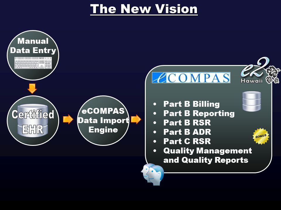 The New Vision Manual Data Entry eCOMPAS Data Import Engine Part B Billing Part B Reporting Part B RSR Part B ADR Part C RSR Quality Management and Quality Reports