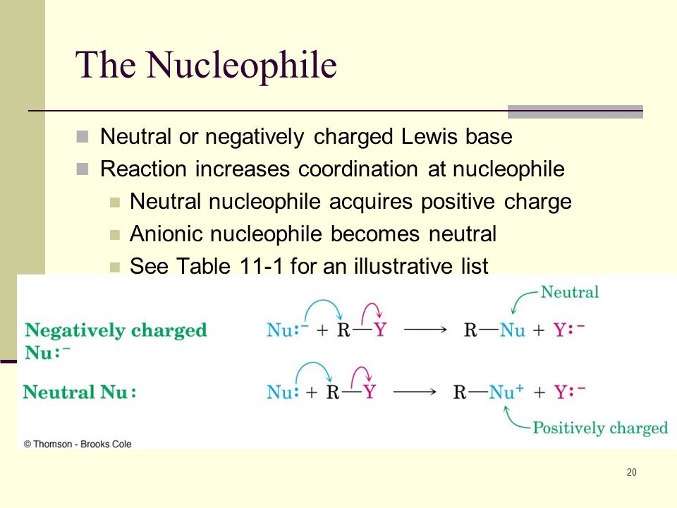 20 The Nucleophile Neutral or negatively charged Lewis base Reaction increases coordination at nucleophile Neutral nucleophile acquires positive charg