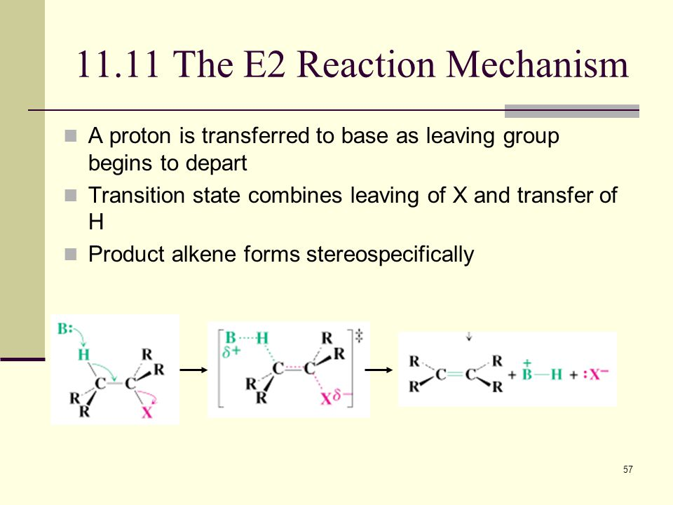 57 11.11 The E2 Reaction Mechanism A proton is transferred to base as leaving group begins to depart Transition state combines leaving of X and transf