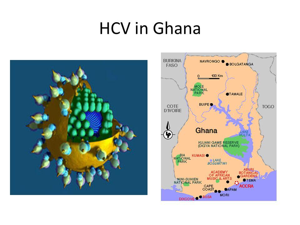 HCV in Africa Karoney et al., 2013