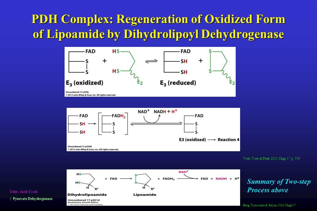 PDH Complex: Regeneration of Oxidized Form of Lipoamide by Dihydrolipoyl Dehydrogenase Citric Acid Cycle / Pyruvate Dehydrogenase Voet, Voet & Pratt 2013 Chap 17 p.
