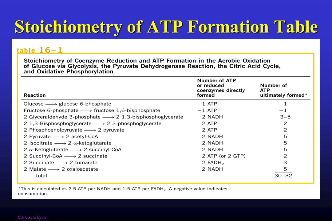 Stoichiometry of ATP Formation Table