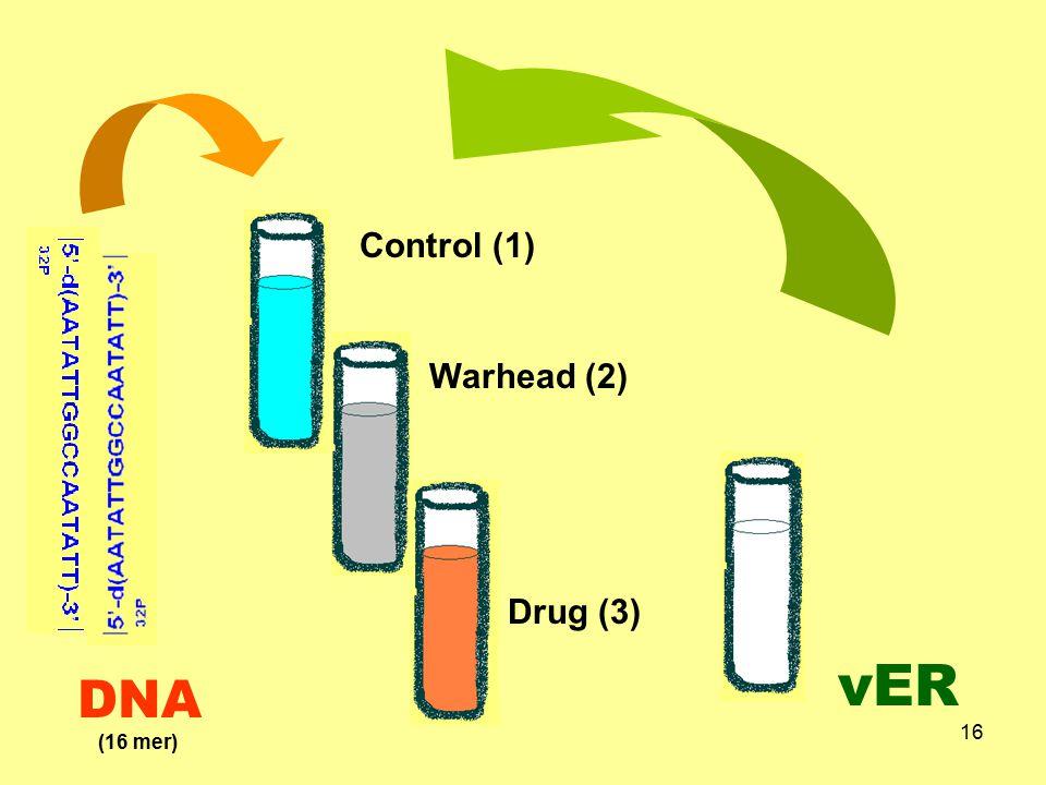 16 Control (1) Warhead (2) Drug (3) vER (16 mer) DNA