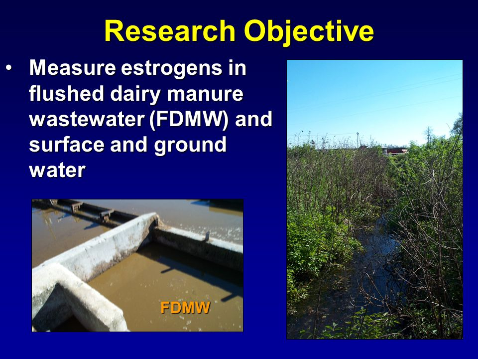 Measure estrogens in flushed dairy manure wastewater (FDMW) and surface and ground waterMeasure estrogens in flushed dairy manure wastewater (FDMW) and surface and ground water Research Objective FDMW