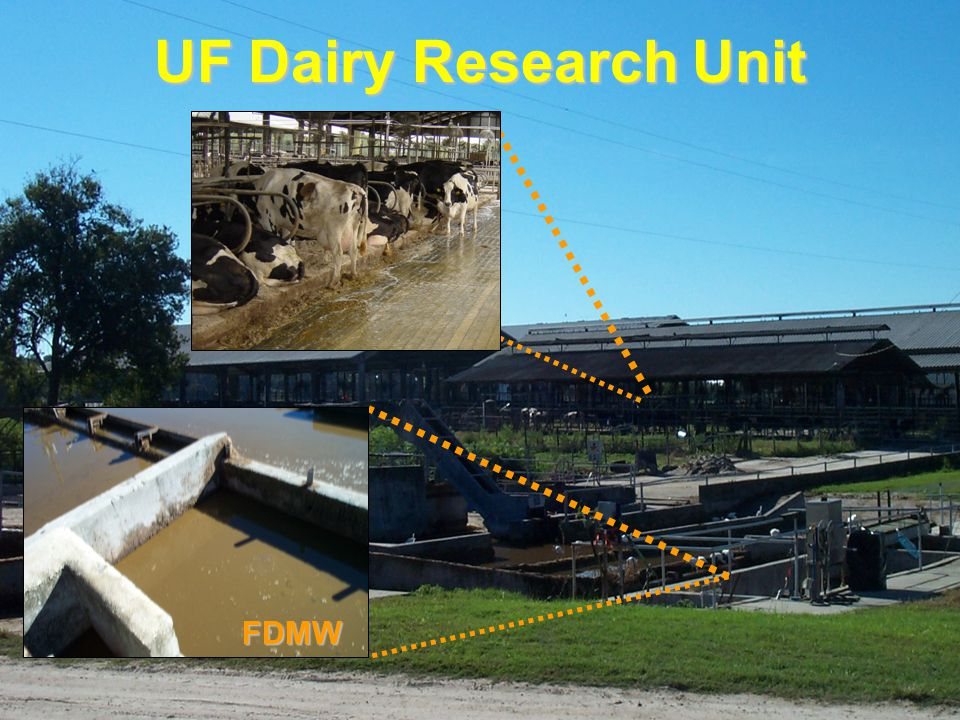 UF Dairy Research Unit FDMW