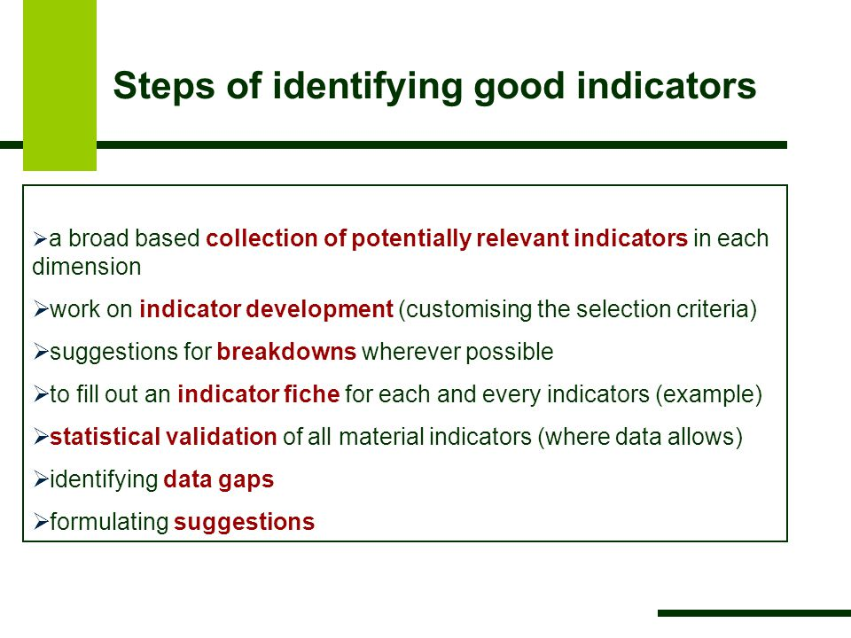  a broad based collection of potentially relevant indicators in each dimension  work on indicator development (customising the selection criteria)  suggestions for breakdowns wherever possible  to fill out an indicator fiche for each and every indicators (example)  statistical validation of all material indicators (where data allows)  identifying data gaps  formulating suggestions Steps of identifying good indicators