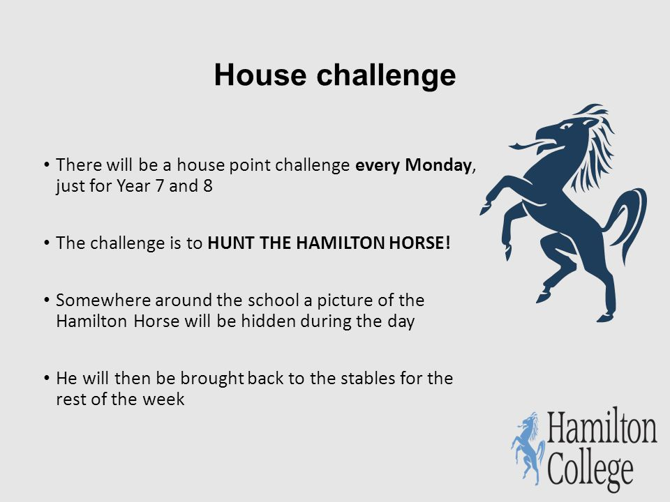 House challenge There will be a house point challenge every Monday, just for Year 7 and 8 The challenge is to HUNT THE HAMILTON HORSE.