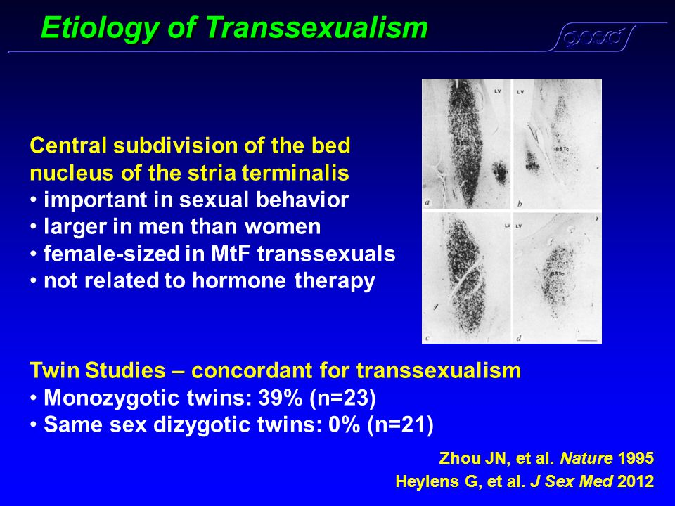 Etiology of Transsexualism Heylens G, et al. J Sex Med 2012 Central subdivision of the bed nucleus of the stria terminalis important in sexual behavio