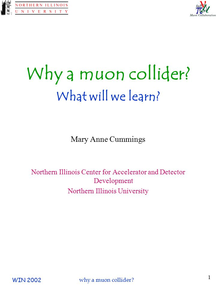 WIN 2002why a muon collider. 1 Why a muon collider.
