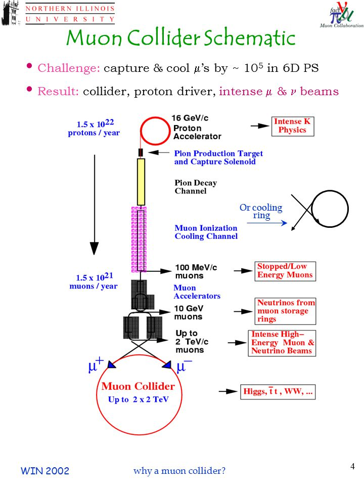 WIN 2002why a muon collider? 5 One possible muon collider… 500 GeV at Fermilab
