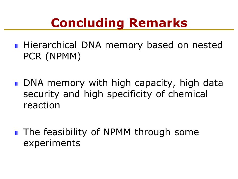 Concluding Remarks Hierarchical DNA memory based on nested PCR (NPMM) DNA memory with high capacity, high data security and high specificity of chemical reaction The feasibility of NPMM through some experiments