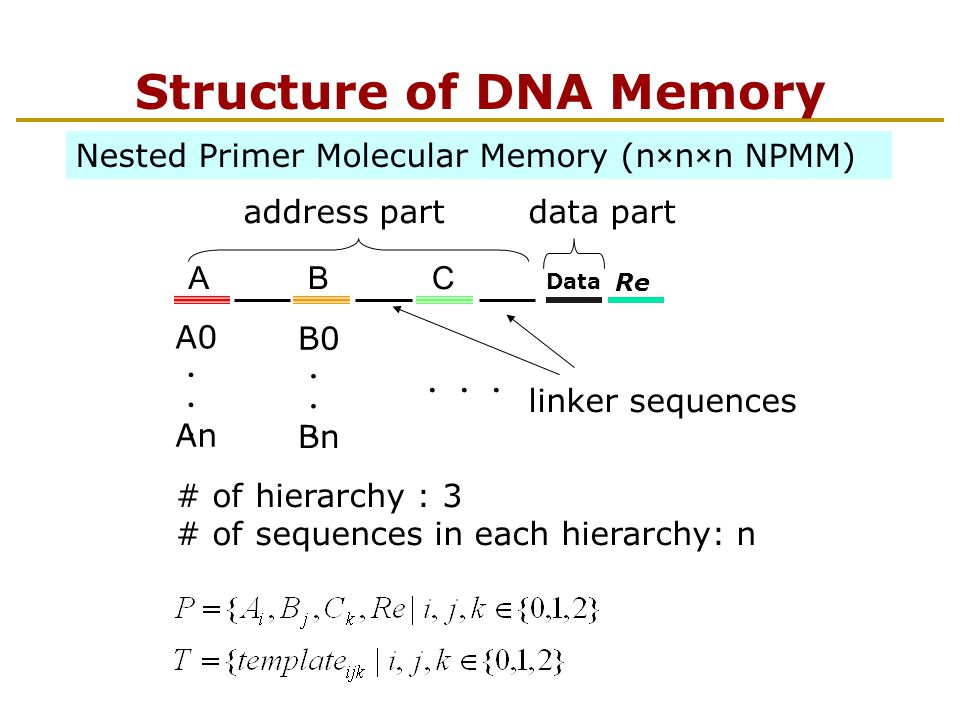 Nested PCR (addressing) A BC Data Re B C Data Re Data Re C address is represented in the primer sequences and the order of use of them