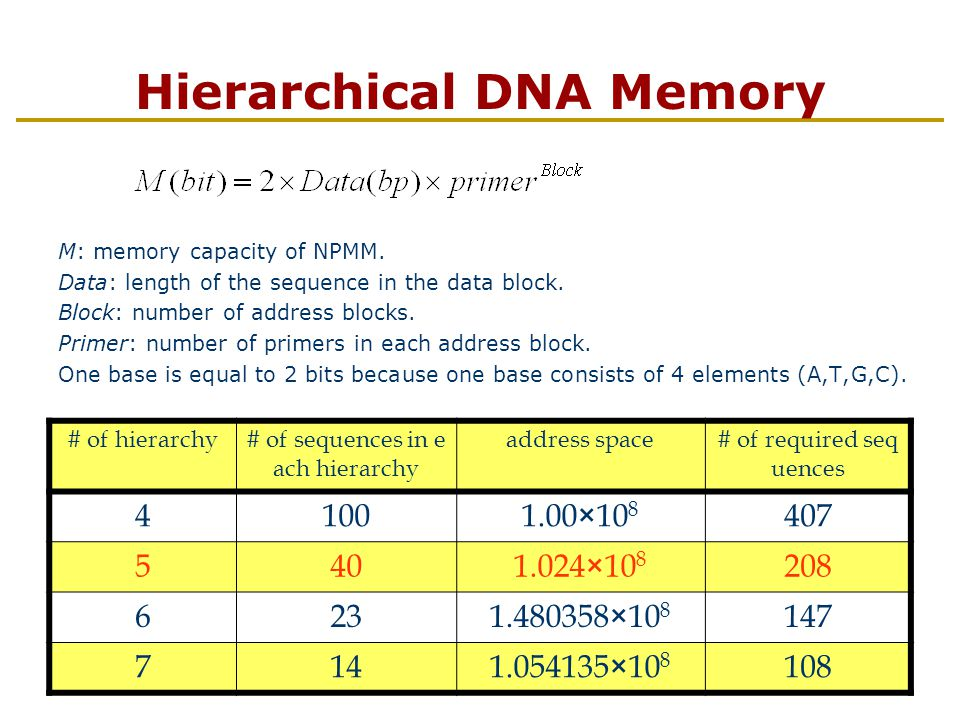 Hierarchical DNA Memory M: memory capacity of NPMM.