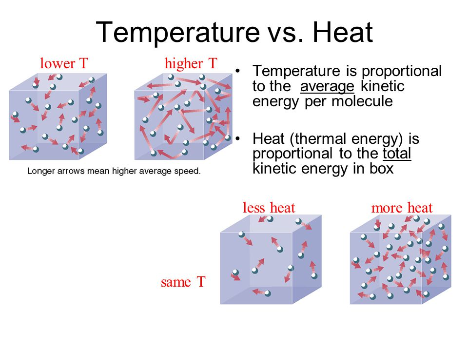 Temperature vs. Heat Temperature is proportional to the average kinetic energy per molecule Heat (thermal energy) is proportional to the total kinetic