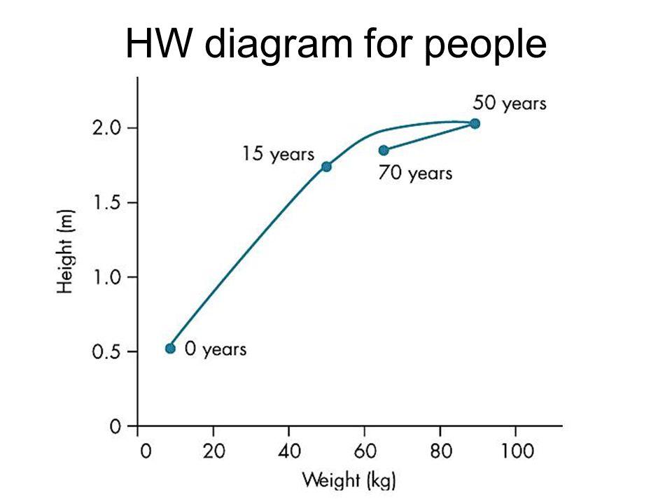 HW diagram for people