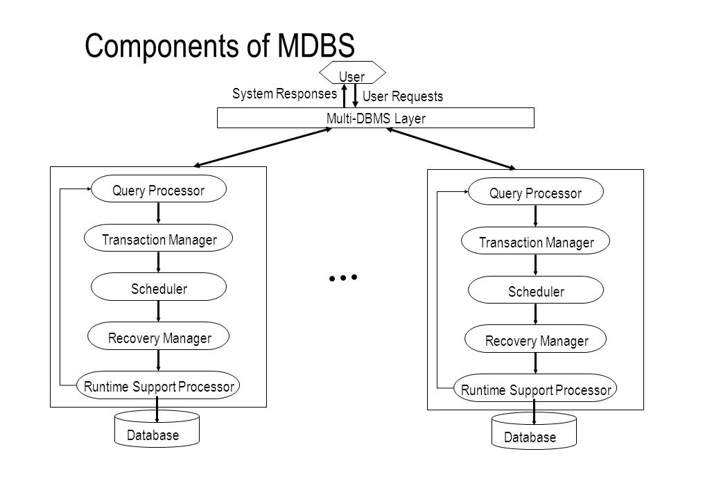 Components of MDBS User Query ProcessorTransaction ManagerSchedulerRecovery Manager Runtime Support Processor User Requests Query ProcessorTransaction