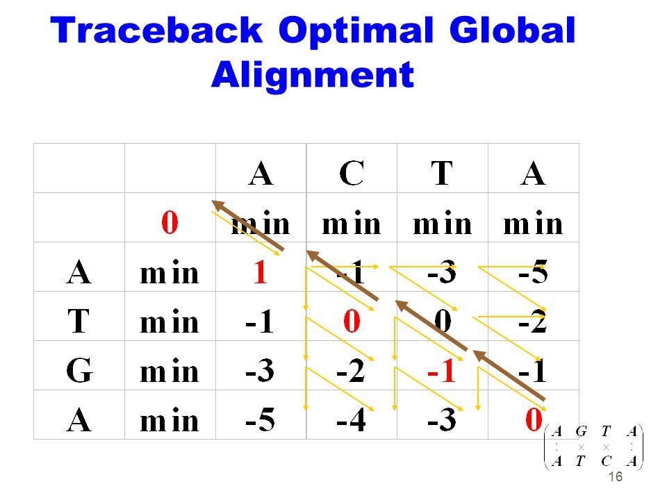 16 Traceback Optimal Global Alignment
