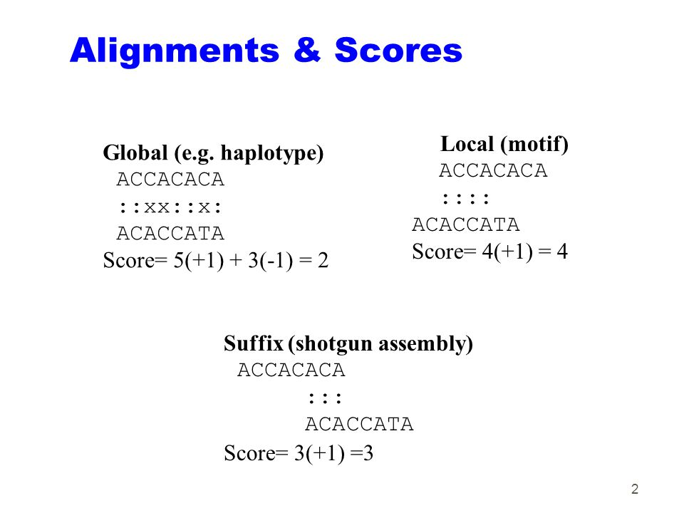 2 Alignments & Scores Global (e.g. haplotype) ACCACACA ::xx::x: ACACCATA Score= 5(+1) + 3(-1) = 2 Suffix (shotgun assembly) ACCACACA ::: ACACCATA Scor