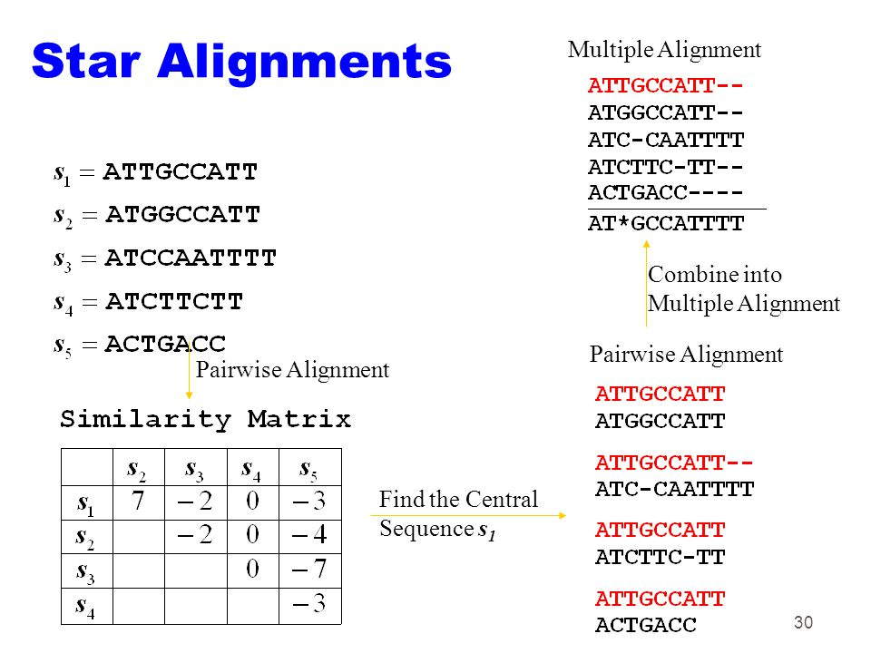 30 Star Alignments Pairwise Alignment Find the Central Sequence s 1 Pairwise Alignment Multiple Alignment Combine into Multiple Alignment