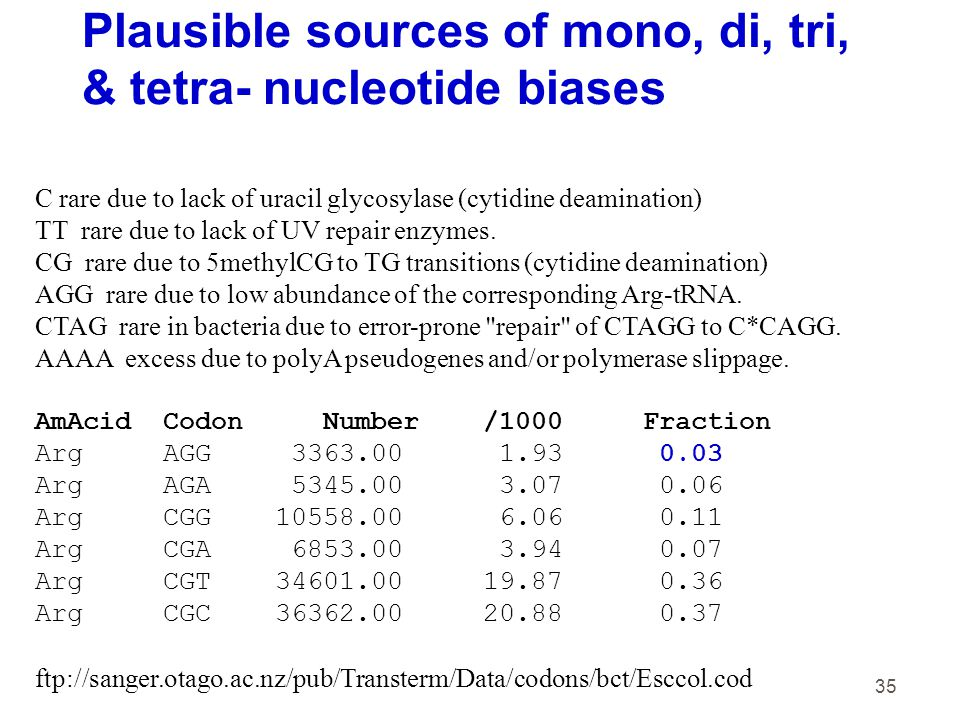35 C rare due to lack of uracil glycosylase (cytidine deamination) TT rare due to lack of UV repair enzymes. CG rare due to 5methylCG to TG transition
