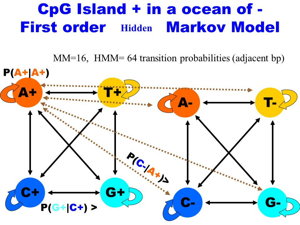 36 C+ A+ G+ T+ P(G+|C+) > P(A+|A+) CpG Island + in a ocean of - First order Markov Model MM=16, HMM= 64 transition probabilities (adjacent bp) C- A- G- T- P(C-|A+)> Hidden