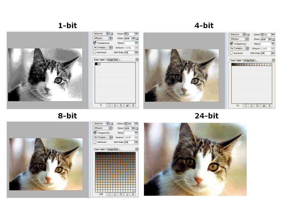 1-bit4-bit 8-bit24-bit