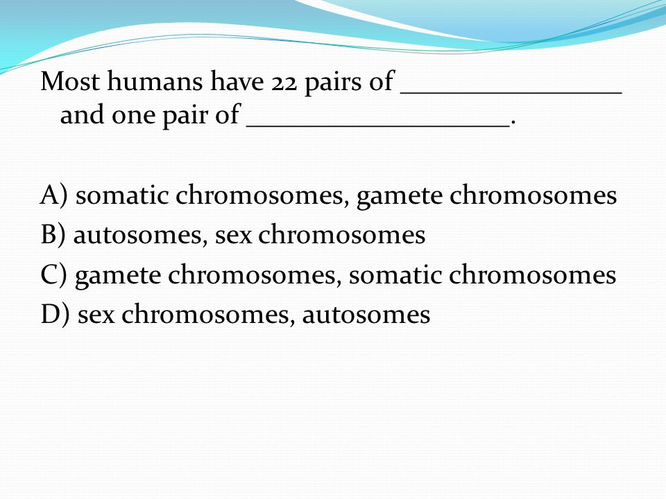 Most humans have 22 pairs of ________________ and one pair of ___________________.