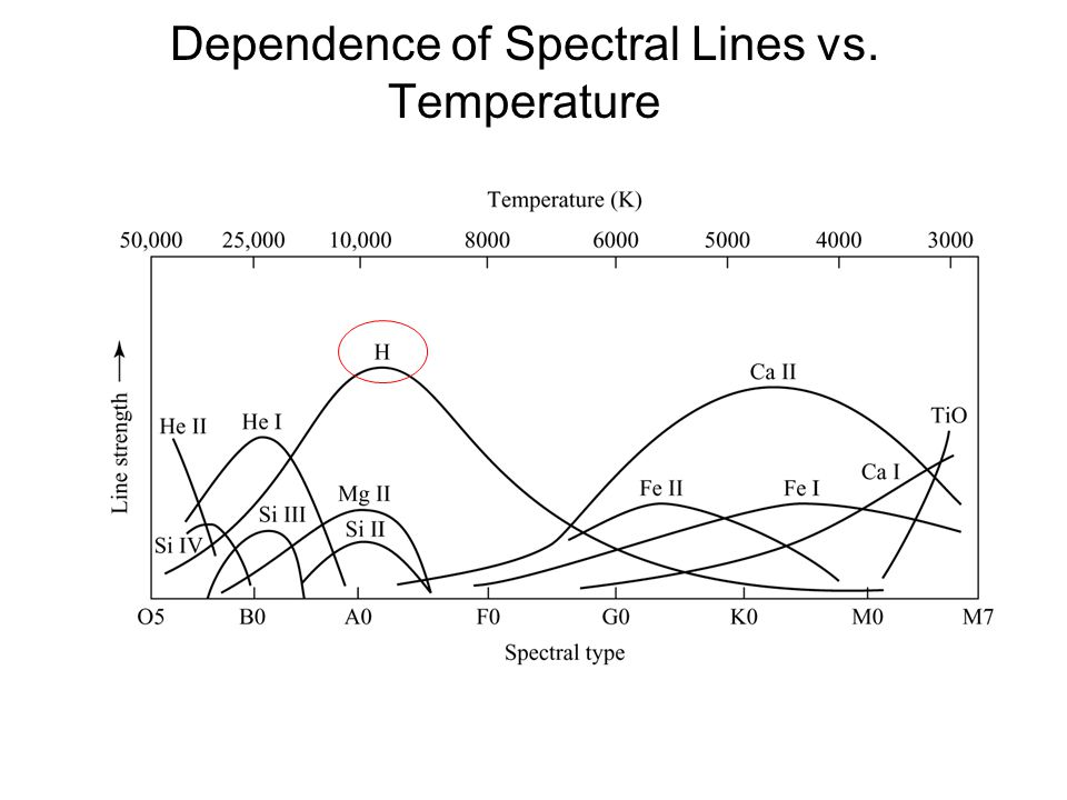 Note the increasing mass and shorter lifetimes as you climb the main sequence Stars leave the main sequence toward the end of their lives