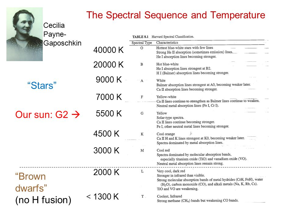 The Spectral Sequence and Temperature 7000 K 5500 K 4500 K 3000 K 2000 K < 1300 K 9000 K 20000 K 40000 K Brown dwarfs (no H fusion) Stars Our sun: G2  Cecilia Payne- Gaposchkin