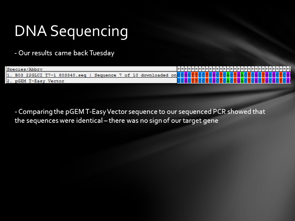 - Our results came back Tuesday DNA Sequencing - Comparing the pGEM T-Easy Vector sequence to our sequenced PCR showed that the sequences were identic