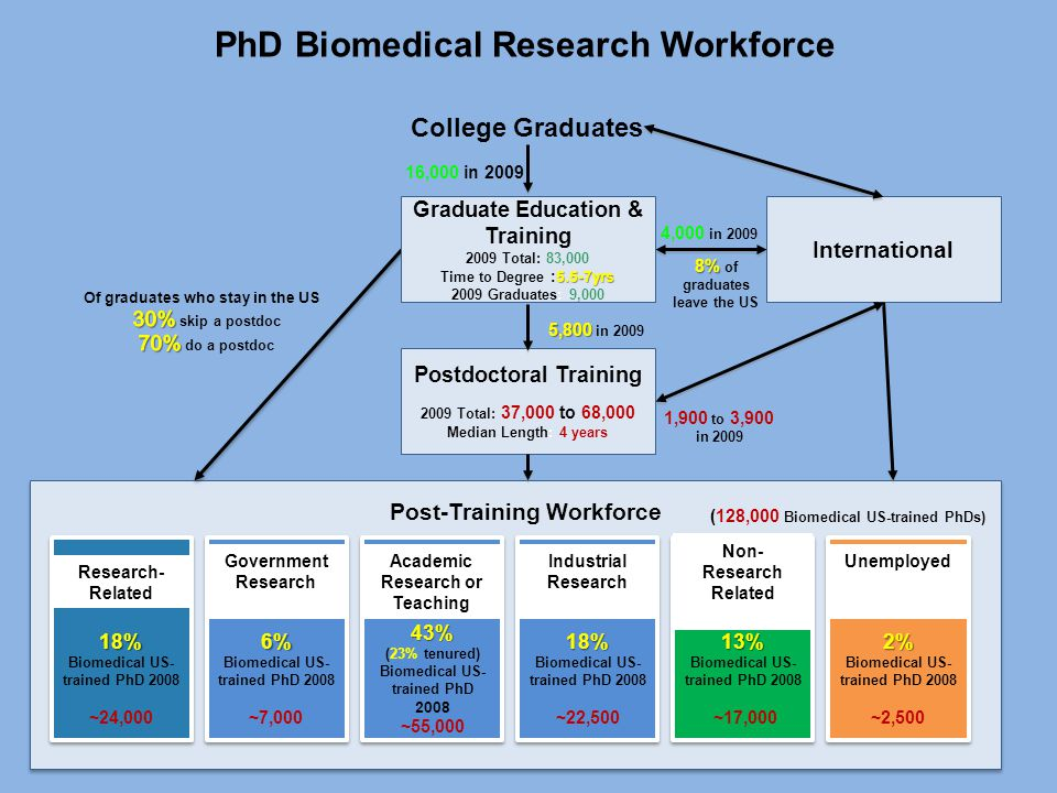 PhD Biomedical Research Workforce  Total of ~150,000 Biomedical US-trained PhD's Postdoctoral Training 2009 Total: 37,000 to 68,000 Median Length: 4 years International Post-Training Workforce College Graduates 8% 8% of graduates leave the US 1,900 to 3,900 in 2009 4,000 in 2009 Graduate Education & Training 2009 Total: 83,000 5.5-7yrs Time to Degree :5.5-7yrs 2009 Graduates: 9,000 16,000 in 2009 5,800 5,800 in 2009 18% Biomedical US- trained PhD 2008 ~22,50018% Biomedical US- trained PhD 2008 ~22,500 Industrial Research 43% (23% tenured) Biomedical US- trained PhD 2008 ~55,00043% (23% tenured) Biomedical US- trained PhD 2008 ~55,000 Academic Research or Teaching 6% Biomedical US- trained PhD 2008 ~7,0006% Biomedical US- trained PhD 2008 ~7,000 Government Research 18% Biomedical US- trained PhD 2008 ~24,00018% Biomedical US- trained PhD 2008 ~24,000 Research- Related 13% Biomedical US- trained PhD 2008 ~17,00013% Biomedical US- trained PhD 2008 ~17,000 Non- Research Related 2% Biomedical US- trained PhD 2008 ~2,5002% Biomedical US- trained PhD 2008 ~2,500 Unemployed (128,000 Biomedical US-trained PhDs) PhD Biomedical Research Workforce