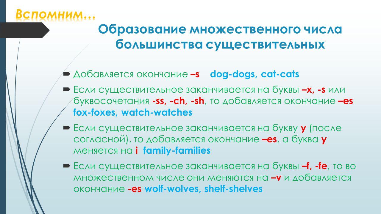 Образование множественного числа большинства существительных  Добавляется окончание –s dog-dogs, cat-cats  Если существительное заканчивается на буквы –x, -s или буквосочетания -ss, -ch, -sh, то добавляется окончание –es fox-foxes, watch-watches  Если существительное заканчивается на букву y (после согласной), то добавляется окончание –es, а буква y меняется на i family-families  Если существительное заканчивается на буквы –f, -fe, то во множественном числе они меняются на –v и добавляется окончание -es wolf-wolves, shelf-shelves