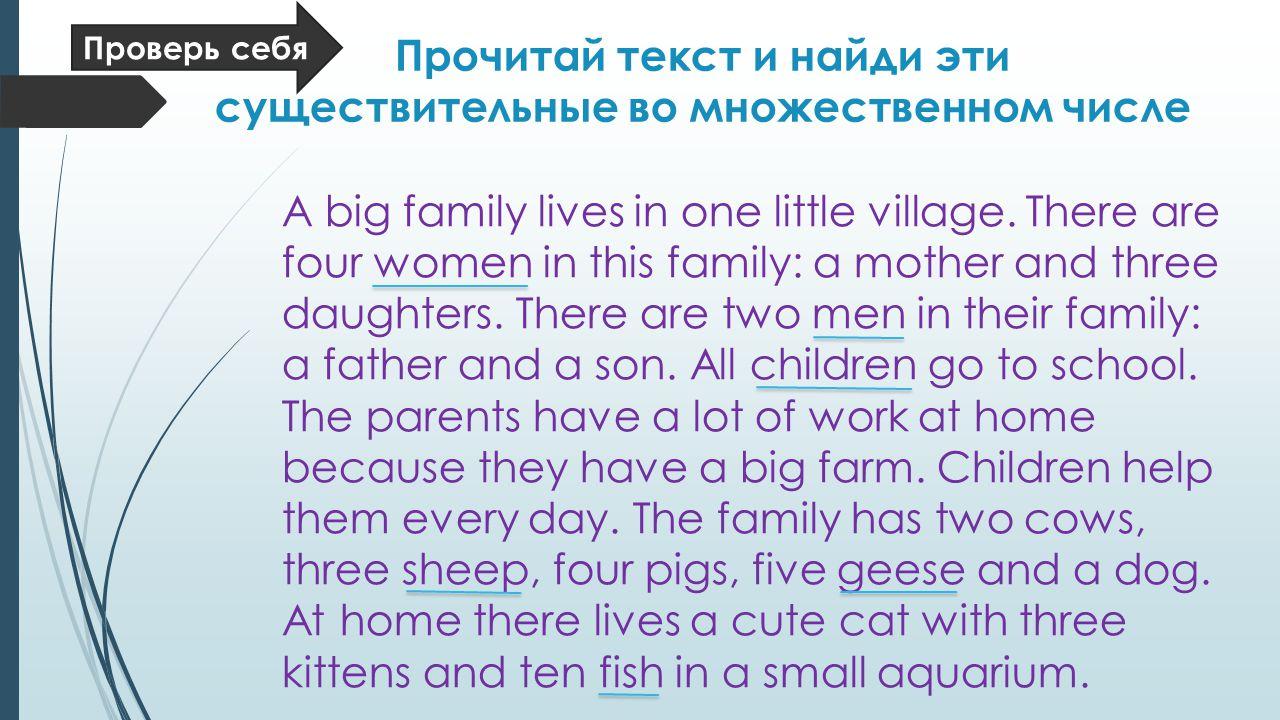 Прочитай текст и найди эти существительные во множественном числе A big family lives in one little village.