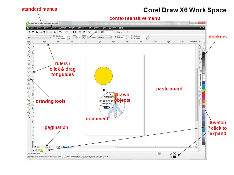 Corel Draw X6 Work Space context sensitive menu drawing tools document paste board rulers / click & drag for guides standard menus Swatch / click to expand dockers pagination drawn objects
