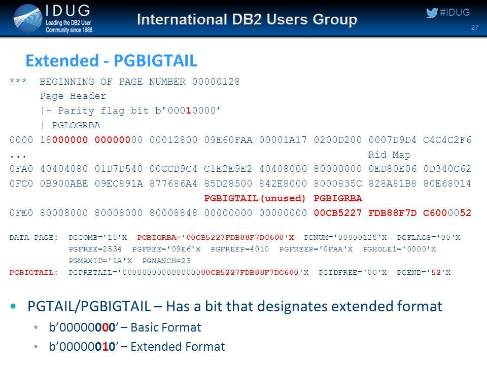 #IDUG Extended - PGBIGTAIL *** BEGINNING OF PAGE NUMBER 00000128 Page Header |- Parity flag bit b'00010000' | PGLOGRBA 0000 18000000 00000000 00012800 09E60FAA 00001A17 0200D200 0007D9D4 C4C4C2F6...