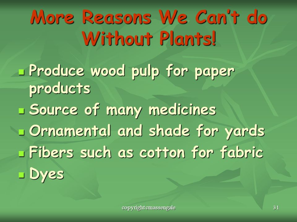 31 More Reasons We Can't do Without Plants.