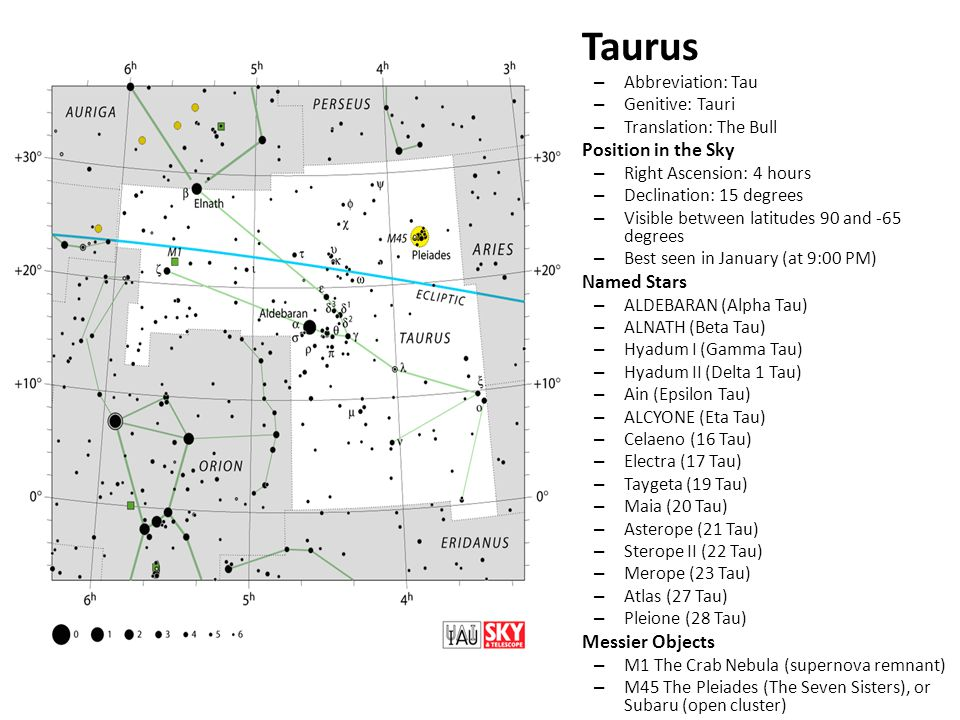 Taurus – Abbreviation: Tau – Genitive: Tauri – Translation: The Bull Position in the Sky – Right Ascension: 4 hours – Declination: 15 degrees – Visible between latitudes 90 and -65 degrees – Best seen in January (at 9:00 PM) Named Stars – ALDEBARAN (Alpha Tau) – ALNATH (Beta Tau) – Hyadum I (Gamma Tau) – Hyadum II (Delta 1 Tau) – Ain (Epsilon Tau) – ALCYONE (Eta Tau) – Celaeno (16 Tau) – Electra (17 Tau) – Taygeta (19 Tau) – Maia (20 Tau) – Asterope (21 Tau) – Sterope II (22 Tau) – Merope (23 Tau) – Atlas (27 Tau) – Pleione (28 Tau) Messier Objects – M1 The Crab Nebula (supernova remnant) – M45 The Pleiades (The Seven Sisters), or Subaru (open cluster)