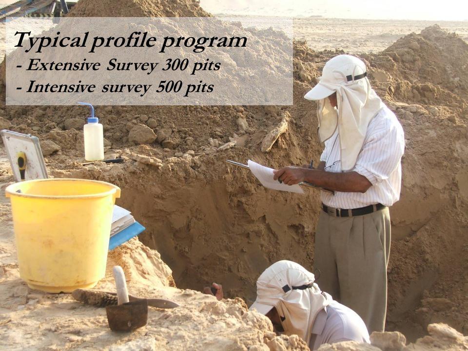 Fieldwork implementation Typical profile program - Extensive Survey 300 pits - Intensive survey 500 pits