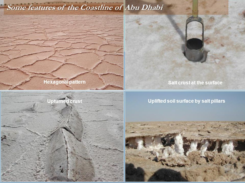 Salt crust at the surface Uplifted soil surface by salt pillars Hexagonal pattern Upturned crust Some features of the Coastline of Abu Dhabi