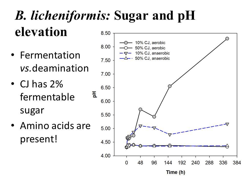 B. licheniformis: Sugar and pH elevation Fermentation vs.deamination CJ has 2% fermentable sugar Amino acids are present!