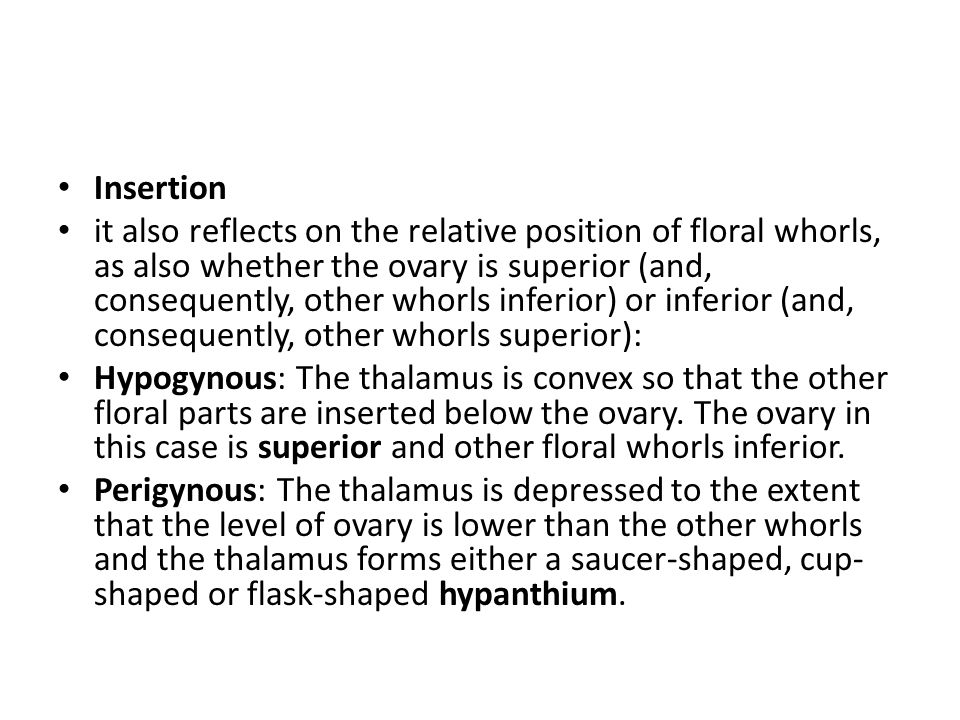Insertion it also reflects on the relative position of floral whorls, as also whether the ovary is superior (and, consequently, other whorls inferior) or inferior (and, consequently, other whorls superior): Hypogynous: The thalamus is convex so that the other floral parts are inserted below the ovary.