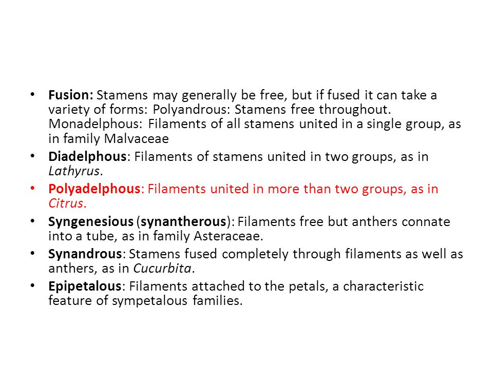 Fusion: Stamens may generally be free, but if fused it can take a variety of forms: Polyandrous: Stamens free throughout.