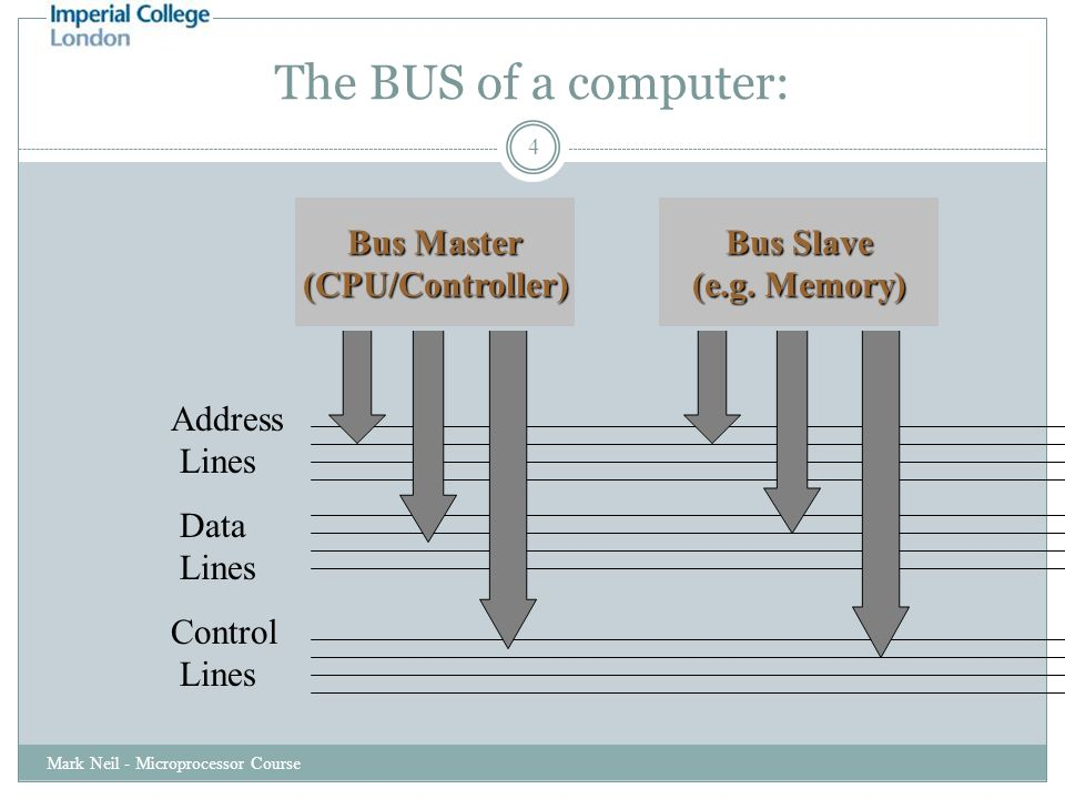The BUS of a computer: Mark Neil - Microprocessor Course 4 Address Lines Data Lines Control Lines Bus Master (CPU/Controller) Bus Slave (e.g.