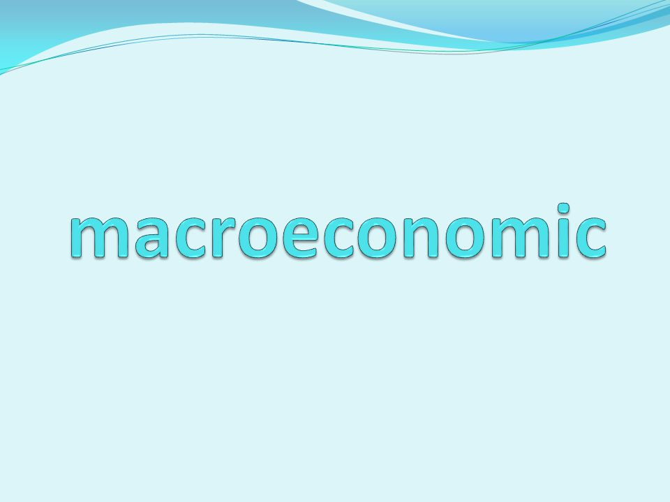 Is a branch of economics dealing with the performance, structure, behavior, and decision-making of the whole economy.