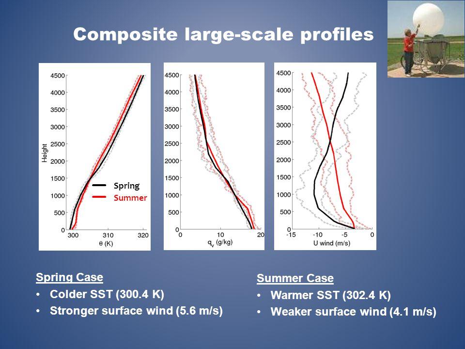 Summer Case Warmer SST (302.4 K) Weaker surface wind (4.1 m/s) Spring Case Colder SST (300.4 K) Stronger surface wind (5.6 m/s) Summer Spring Composit
