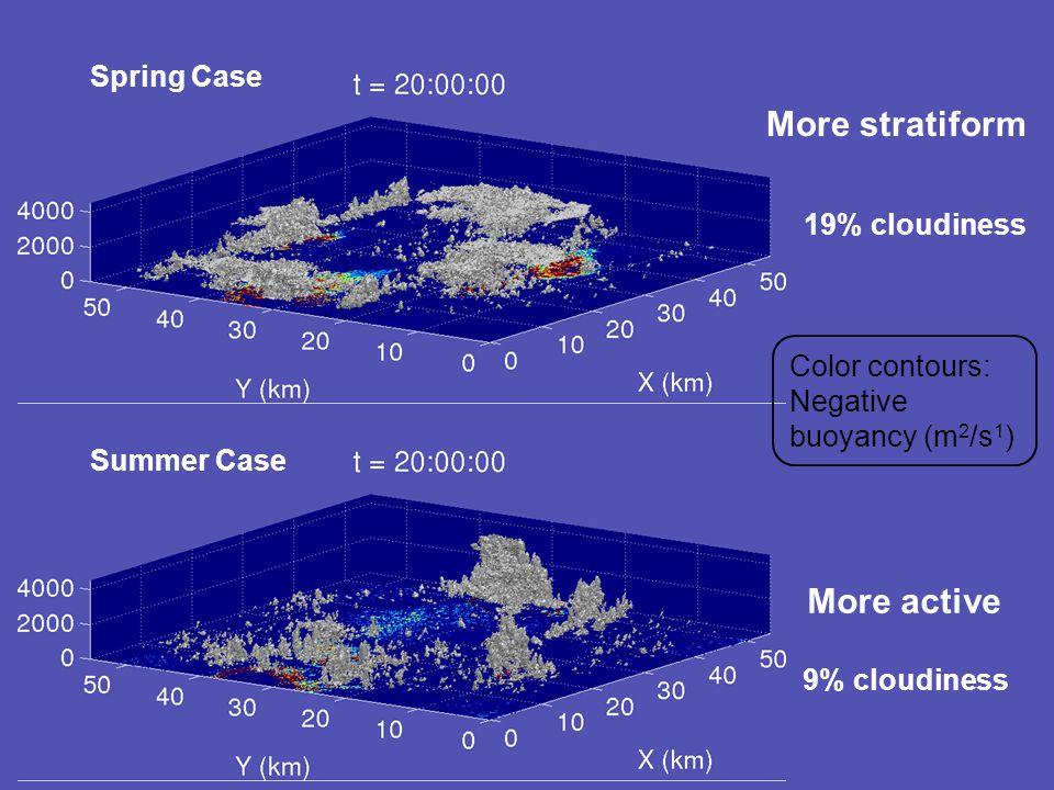 Spring Case Summer Case Color contours: Negative buoyancy (m 2 /s 1 ) More active More stratiform 19% cloudiness 9% cloudiness