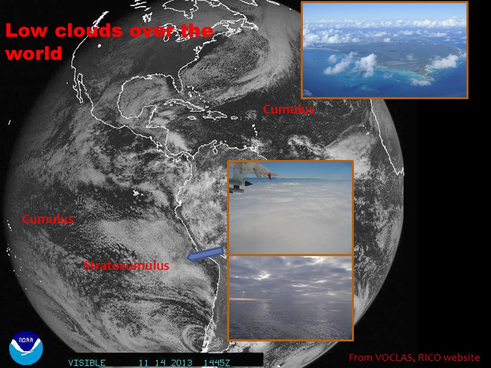 Low clouds over the world From VOCLAS, RICO website Stratocumulus Cumulus