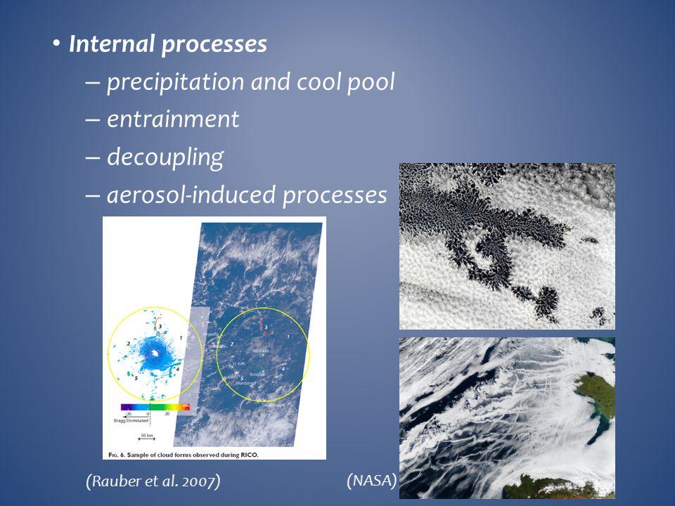 Internal processes – precipitation and cool pool – entrainment – decoupling – aerosol-induced processes (Rauber et al. 2007) (NASA)